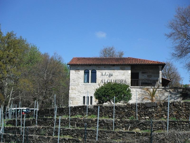 Bodega Algueira (Lugo)