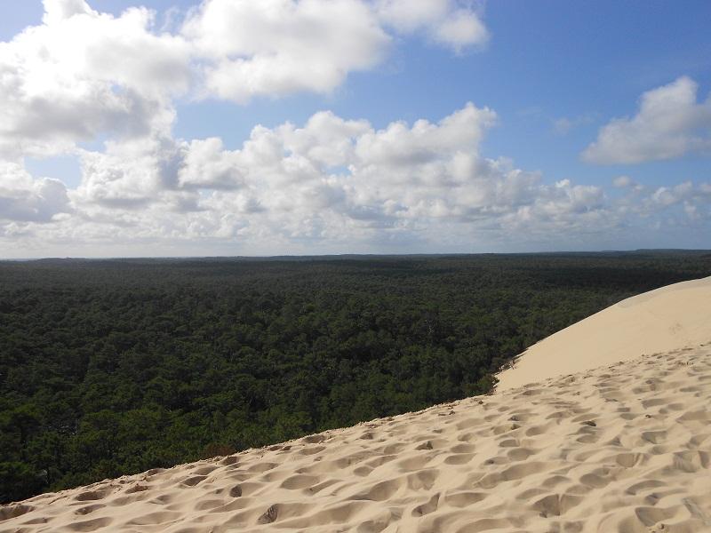 Parque Natural de las Landas de Gascuña