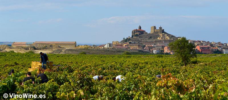 Viñedos de Contador con el castillo de San Vicente de la Sonsierra al fondo