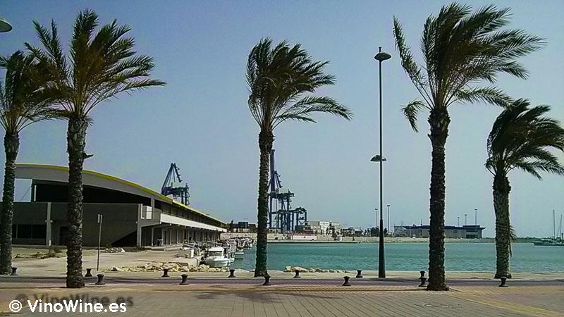 Junto a la lonja en La Mar de Arroz de Alicante