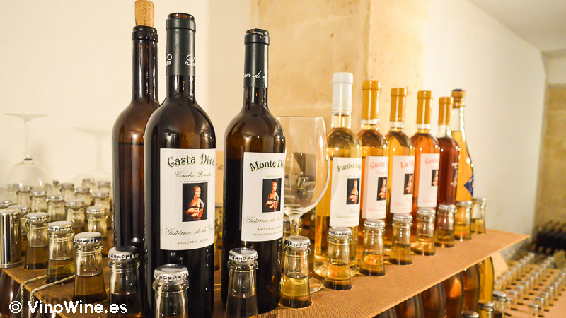 Algunos vinos en Bodegas Gutiérrez de la Vega en Alicante