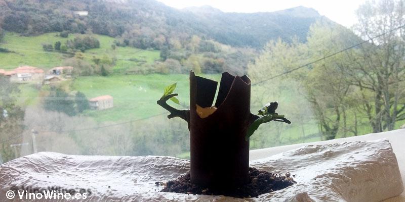 Tiramisú en paisaje del Restaurante Solana de Cantabria