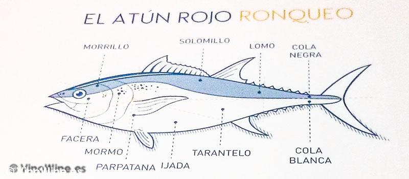 Croquis ilustrativao del Ronqueo del Atún Rojo en el Restaurante El Campero de Barbate