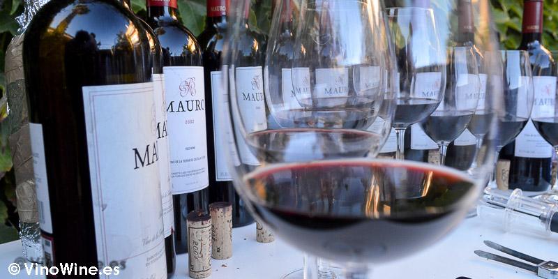 Cata Vertical del Vino Mauro del 2000 al 2010