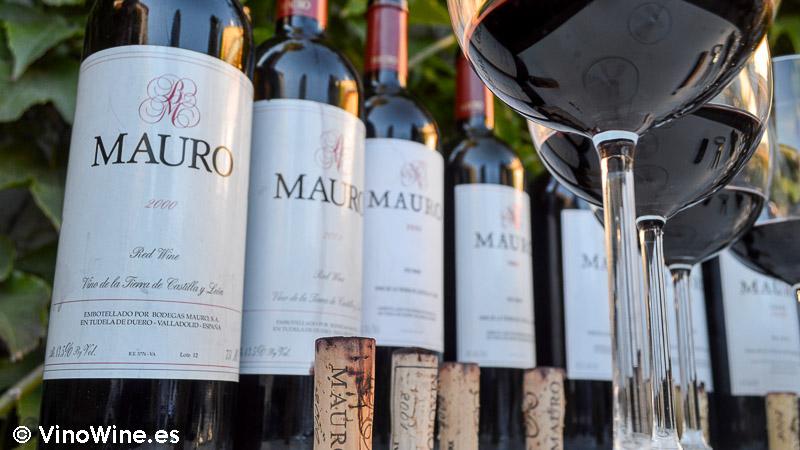 Instantánesa de la cata Vertical de Mauro del 2000 al 2010