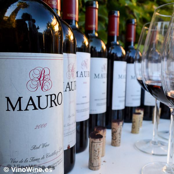 cata-vertical-del-vino-mauro26