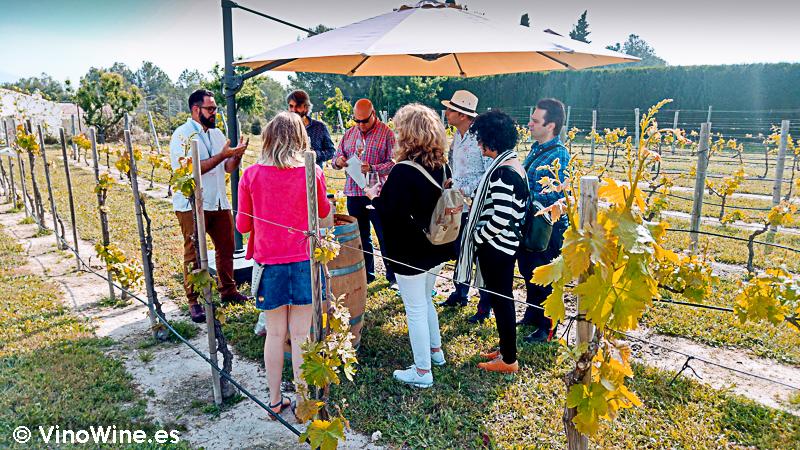 Taller de agricultura ecológica de la I Mendozas Wine Lovers Edition by Bodegas Mendoza