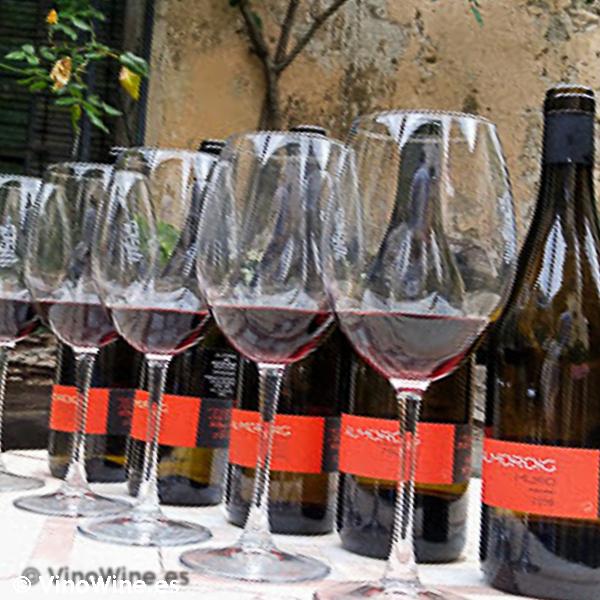 Botellas y copas de la Cata vertical Almoroig 2004 al 2008