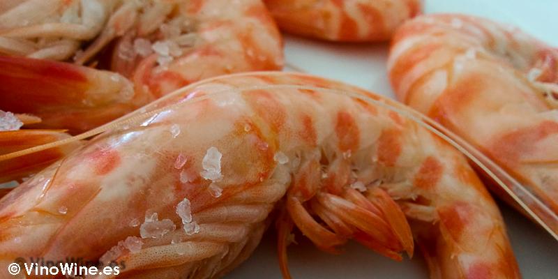 Magnificos langostinos de Sanlucar degustados en el Restaurante El Bichero de Jerez en el Tour Bojos Pel Vi Marco de Jerez