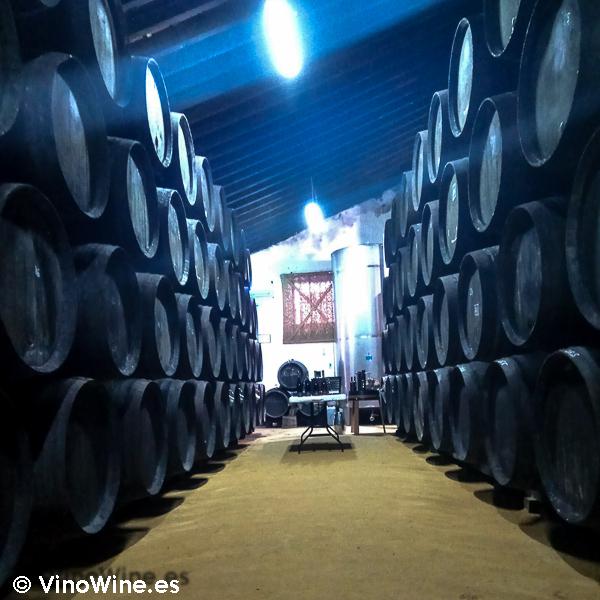 Perspectiva de Bodegas Urium de Jerez