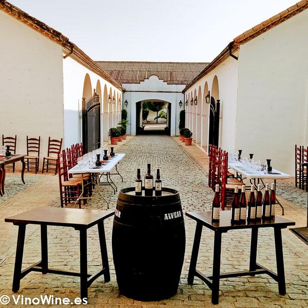 Cata preparada en el patio de la Bodega Alvear visitada en el Encuentro Verema Montilla Moriles