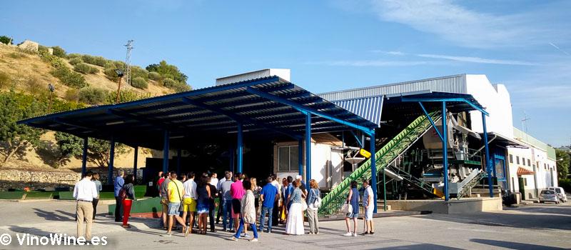 Instalaciones de Almazara Sana Ana propiedad de Bodegas del Pino visitada en el Encuentro Verema Montilla Moriles