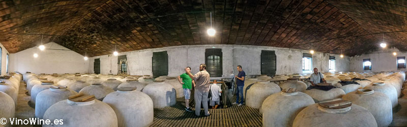Panoramica sala de Tinajas de la Bodega Alvear visitada en el Encuentro Verema Montilla Moriles