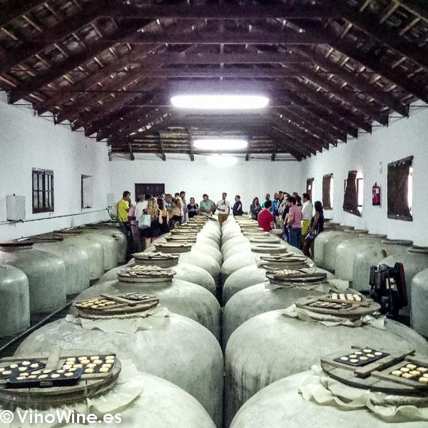 Sala de Tinajas de Bodegas del Pino visitada en el Encuentro Verema Montilla Moriles