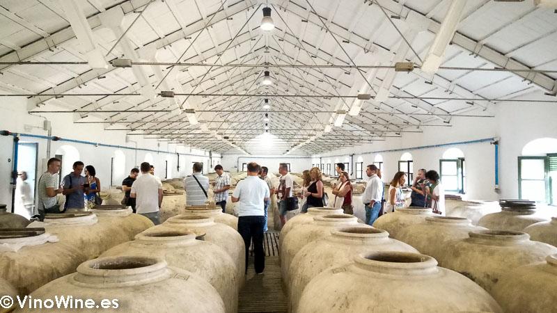 Sala de tinajas de la Bodega Perez Barquero visitada en el Encuentro Verema Montilla Moriles