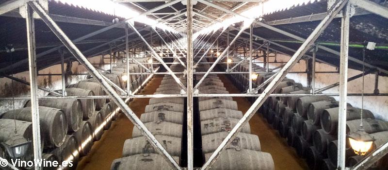 Vista superior de las botas de la bodega Perez Barquero visitada en el Encuentro Verema Montilla Moriles