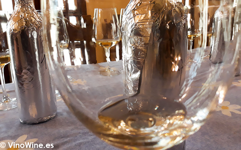 Cata Vertical del vino Viña Tondonia Blanco Reserva del 2000 al 2004