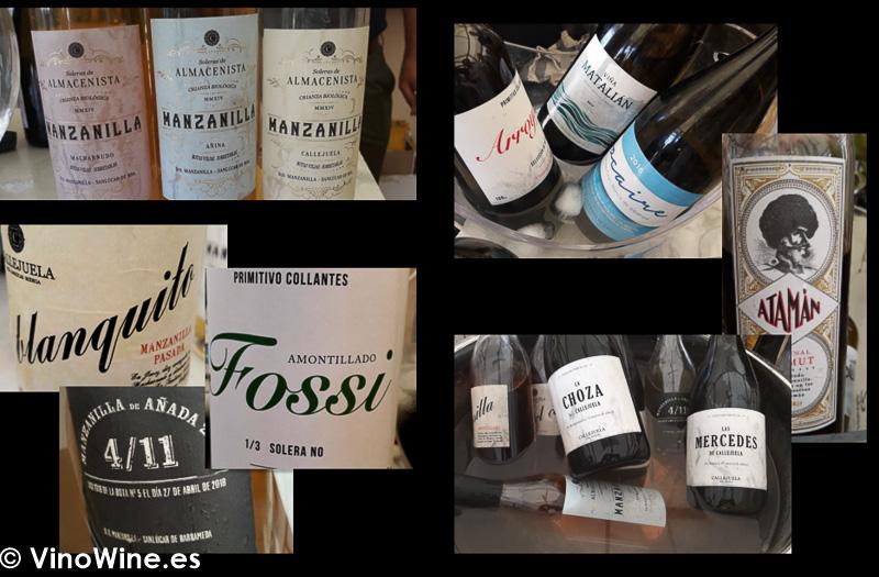 Algunos de los vinos catados en Territorio Albariza en Vinoble