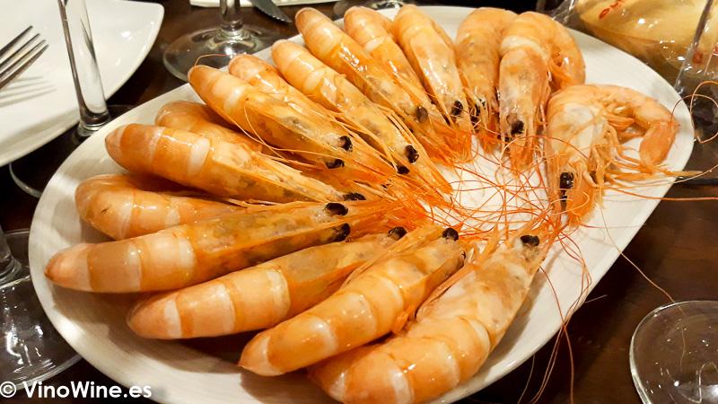 Langostinos de Sanlúcar degustados en la Taberna Oly de Sevilla