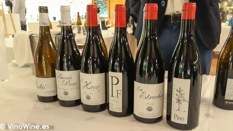 Bodegas y Vinedos Ponce La Odisea Muestra de vinos Homericos