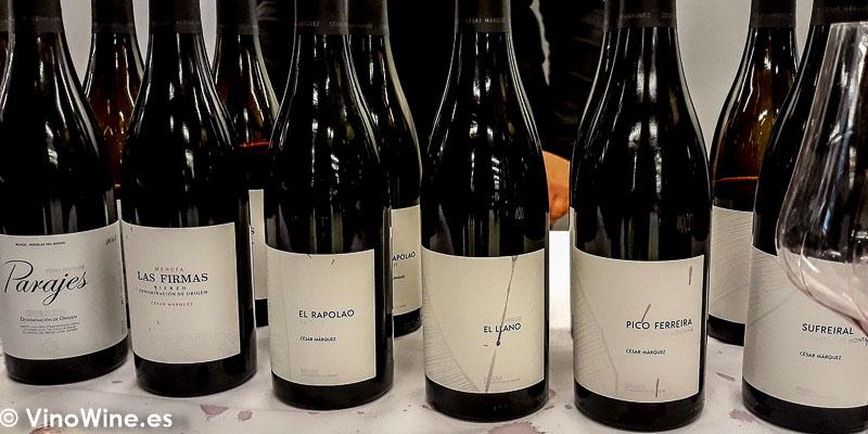 Cesar Marquez del Bierzo en El Alma de los Vinos Unicos 2019 en Burgos