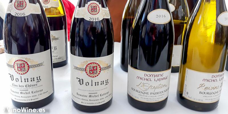 Domaine Michel Lafarge Borgona catados en El Alma de los Vinos Unicos 2019 en Burgos