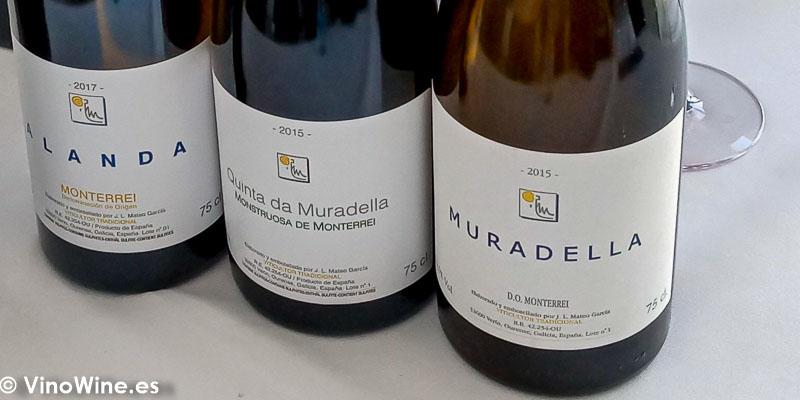 Quinta da Muradella Monterrei Galicia catados El Alma de los Vinos Unicos 2019 en Burgos
